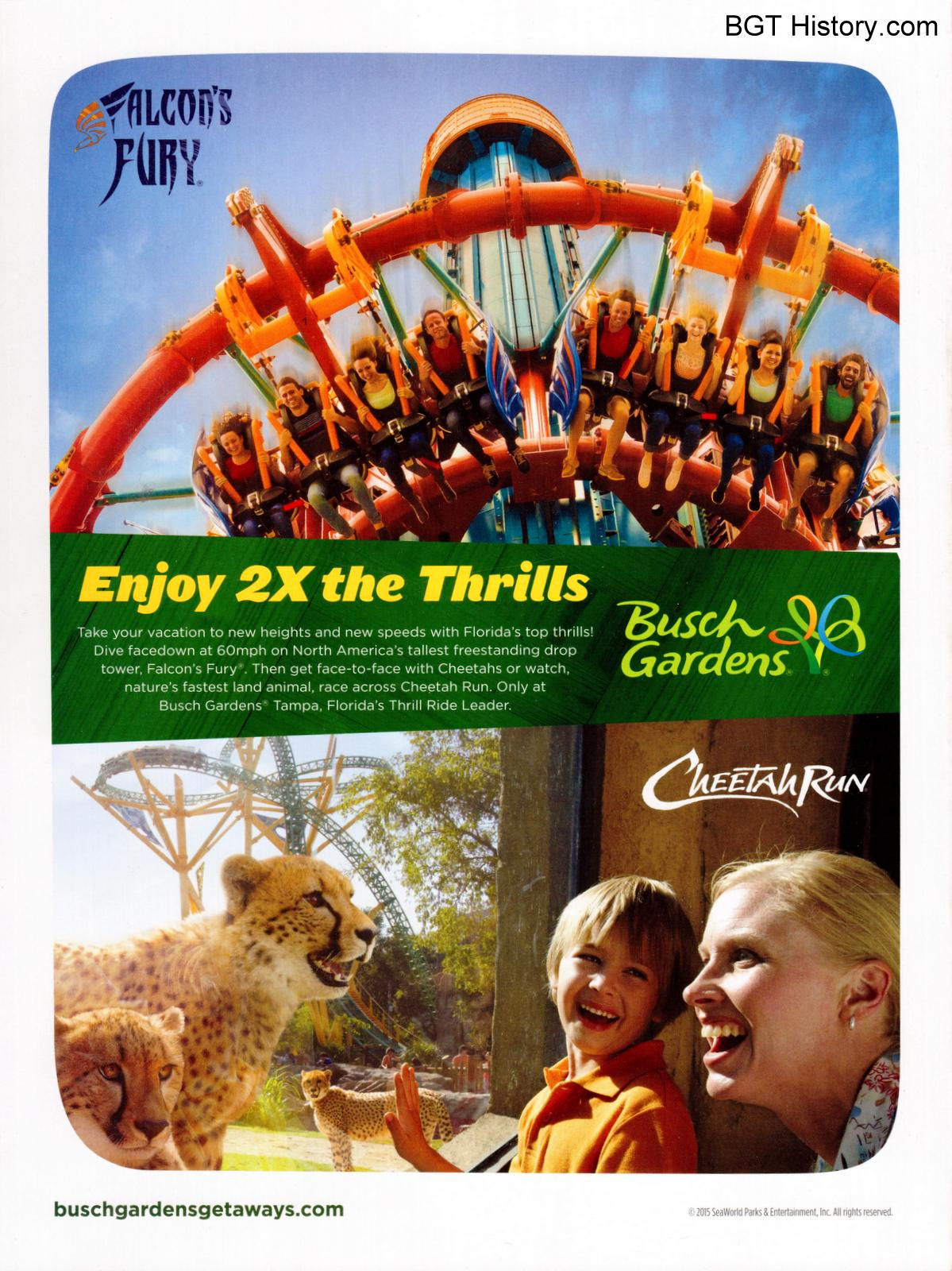Advertisement 2016 Visit Tampa Bay Visitor Guide - Busch Gardens Bring A Friend For Free 2016